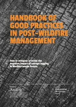 HANDBOOK OF GOOD PRACTICES IN POST-WILDFIRE MANAGEMENT